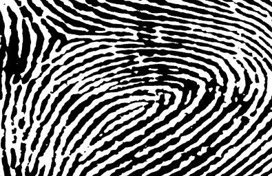 black-and-white-fingerprint-pattern